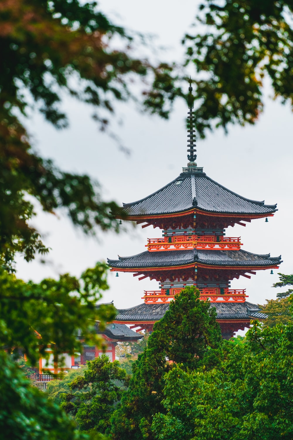 brown and white temple surrounded by green trees during daytime