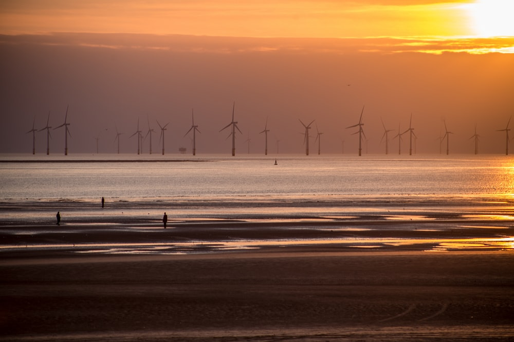 wind turbines on the field during sunset