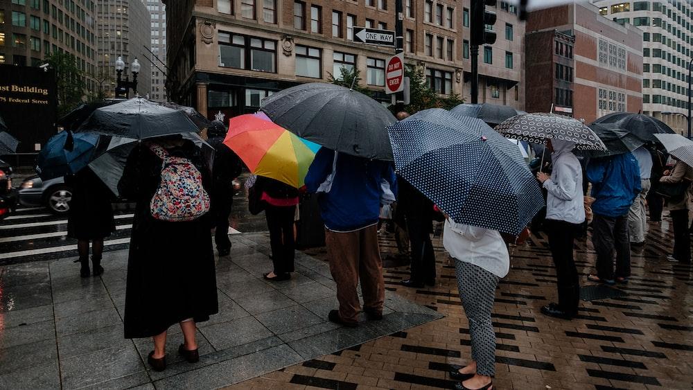 people walking on sidewalk with umbrella during daytime