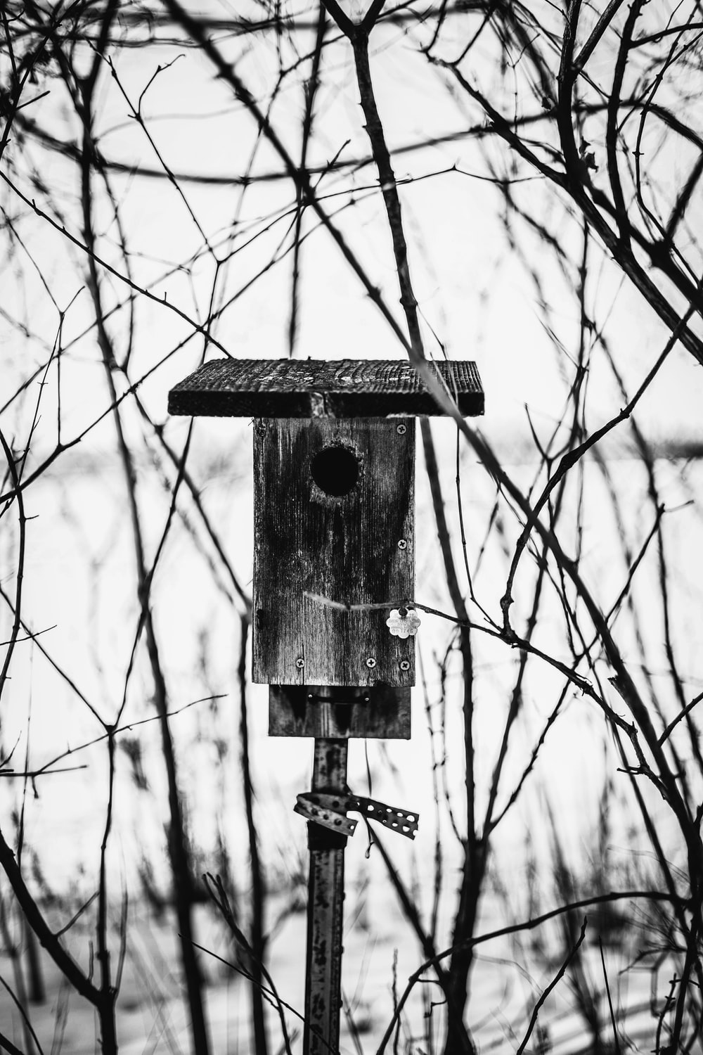 grayscale photo of wooden birdhouse