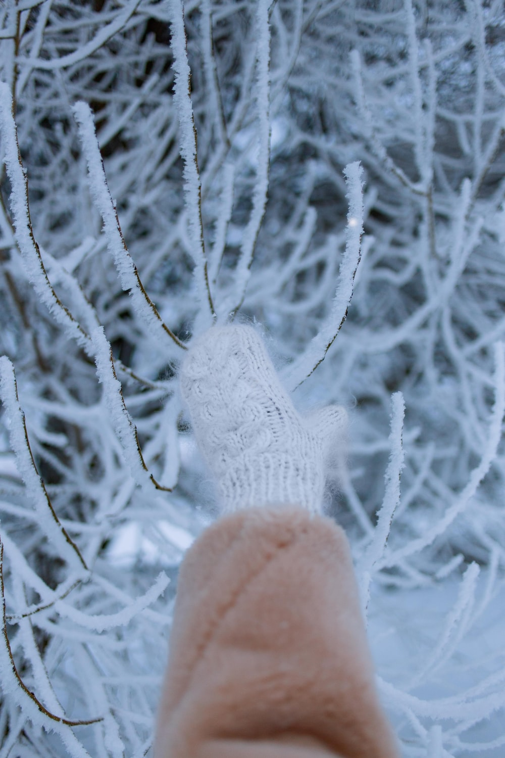 person in pink knit gloves covered with snow