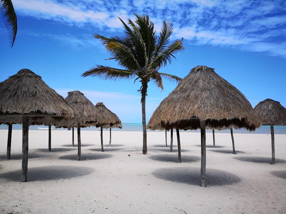 brown nipa hut on beach during daytime