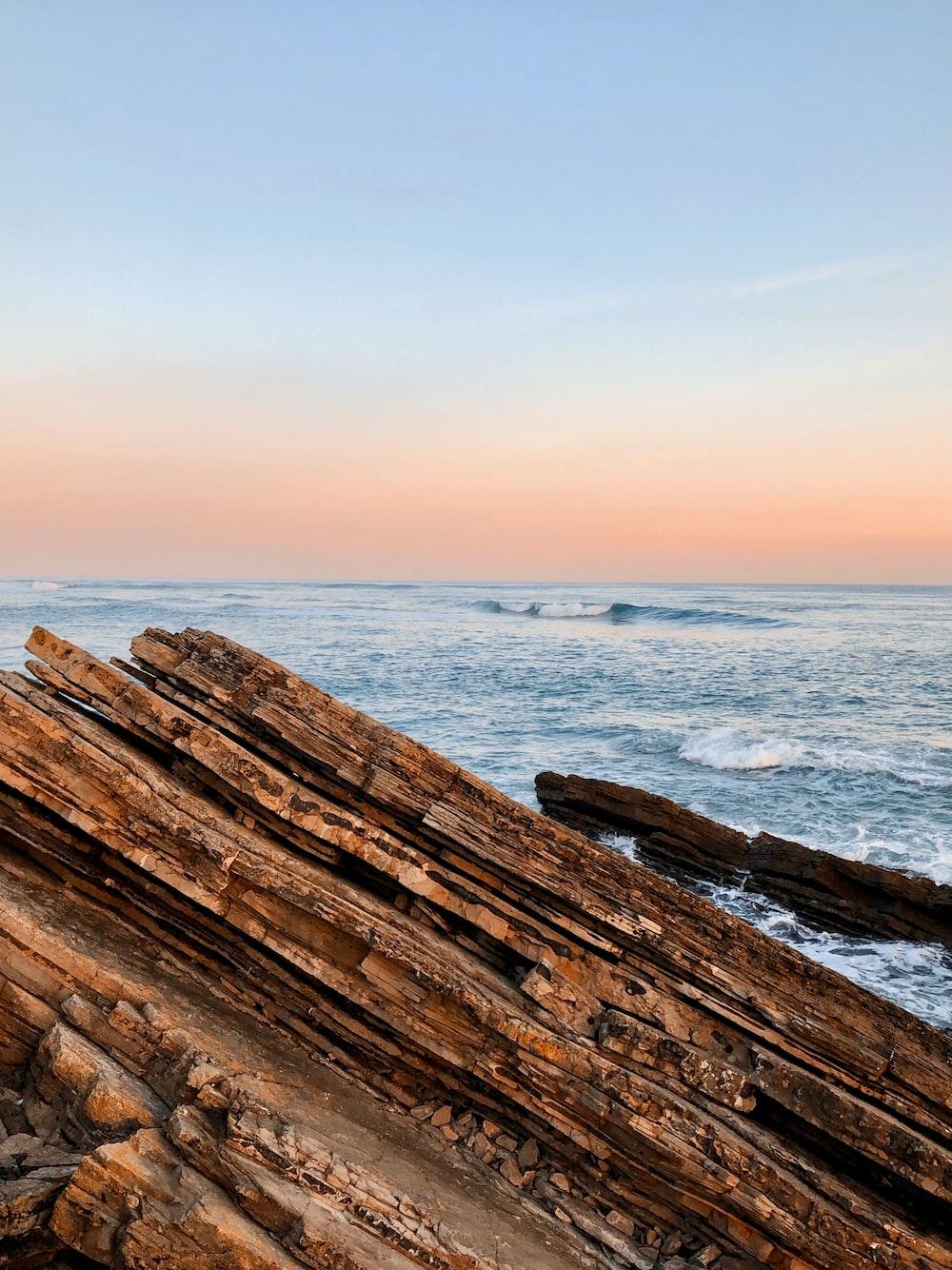 brown wood log on beach during daytime