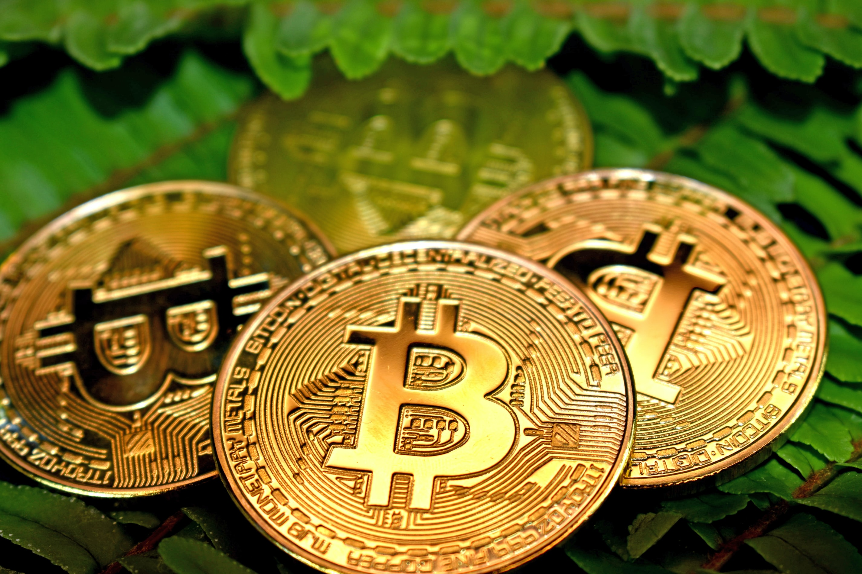 A resourceful step-by-step guide that can let anyone invest in bitcoins without any confusion