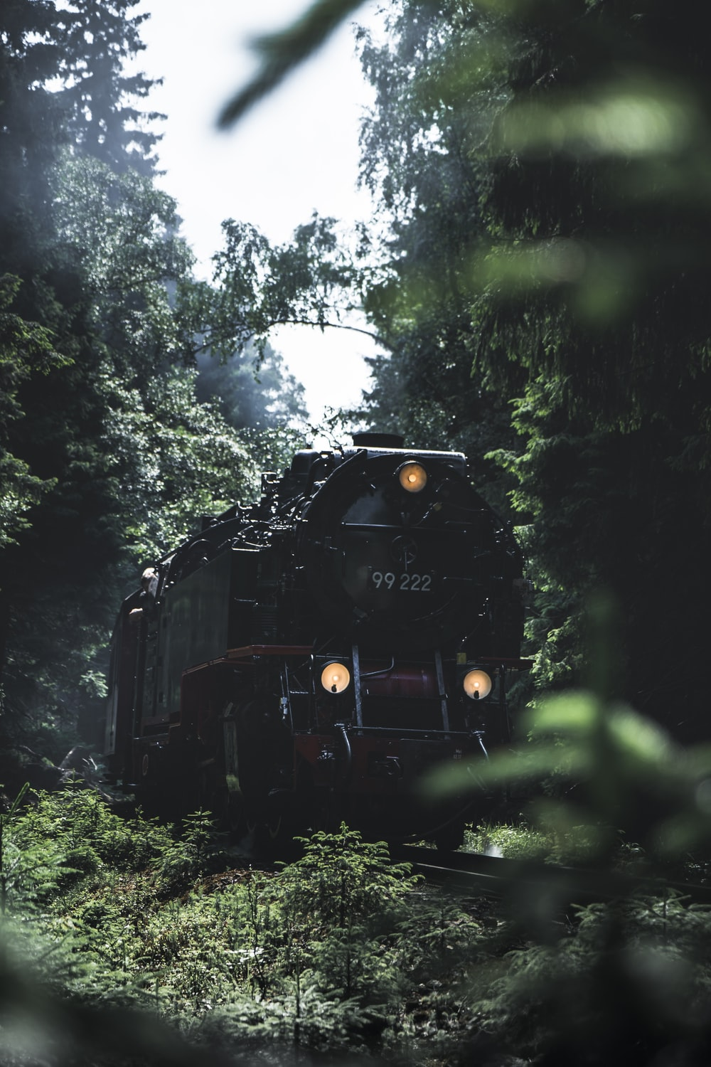 black train in the middle of forest during daytime