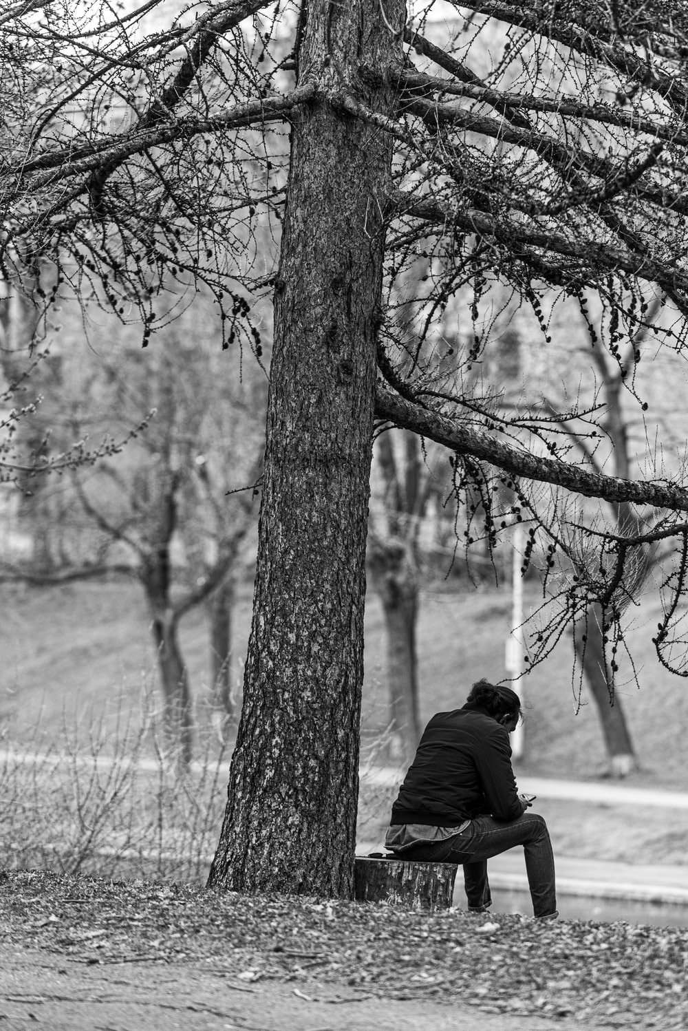 man in black jacket sitting on bench near bare trees during daytime