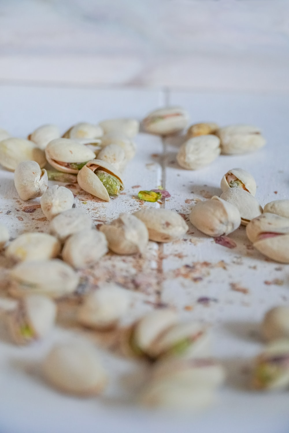 white and brown seashells on white table