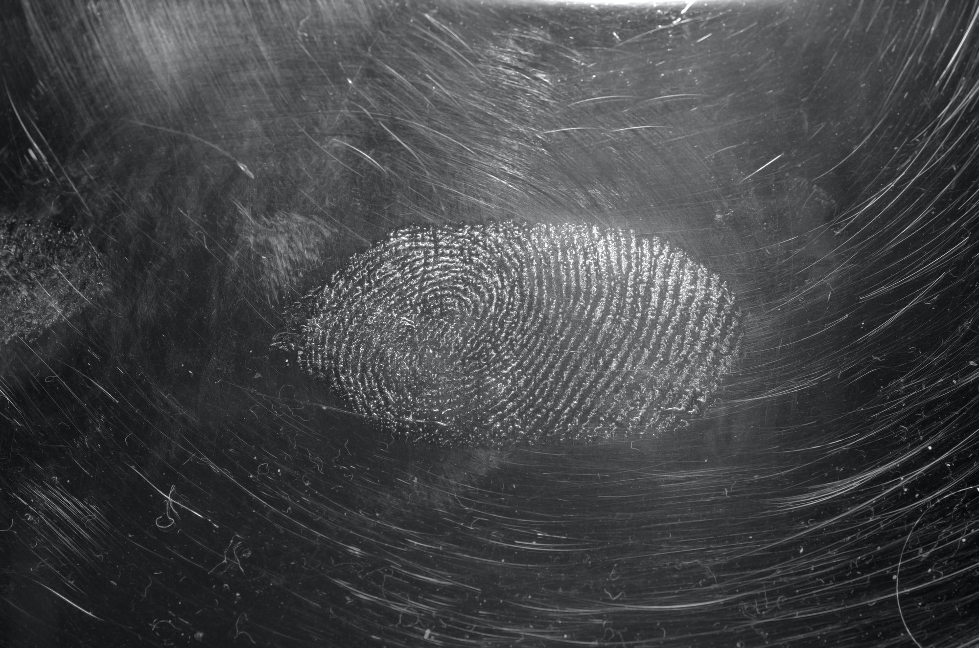 sweat-fingerprint on a CD-cover photographed in reflexlight