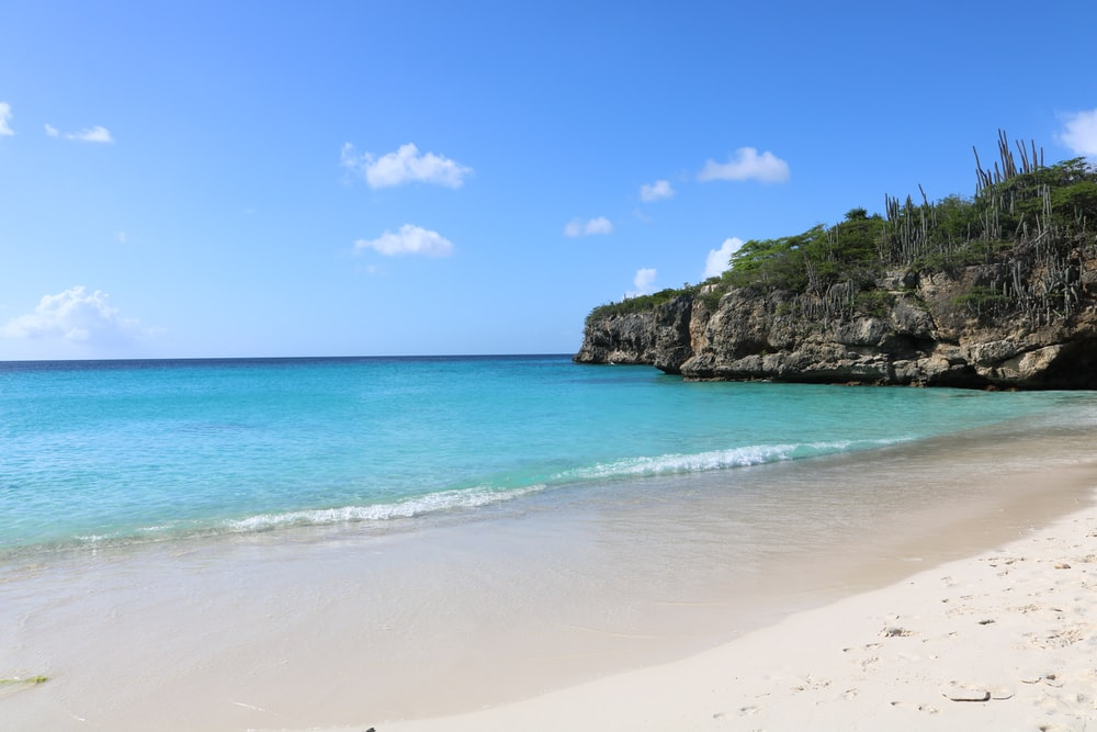 brown sand beach with green trees and blue sea under blue sky during daytime