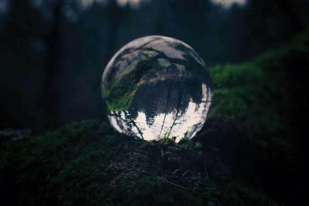 clear glass ball on green grass