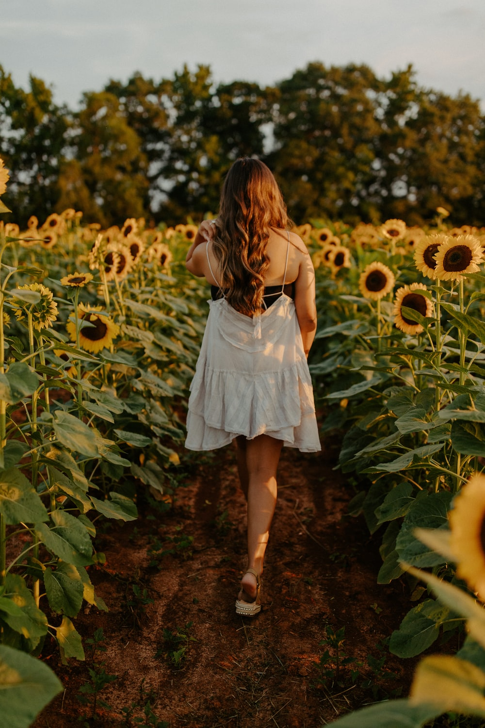 girl in white dress standing on sunflower field during daytime