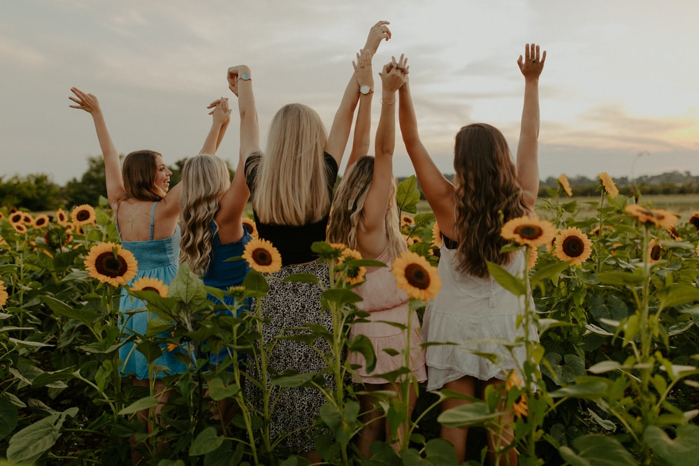 group of people on sunflower field during daytime