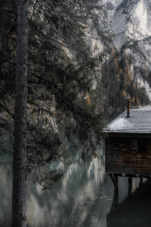 brown wooden house near lake