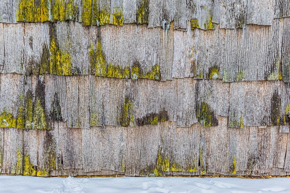 gray and brown brick wall
