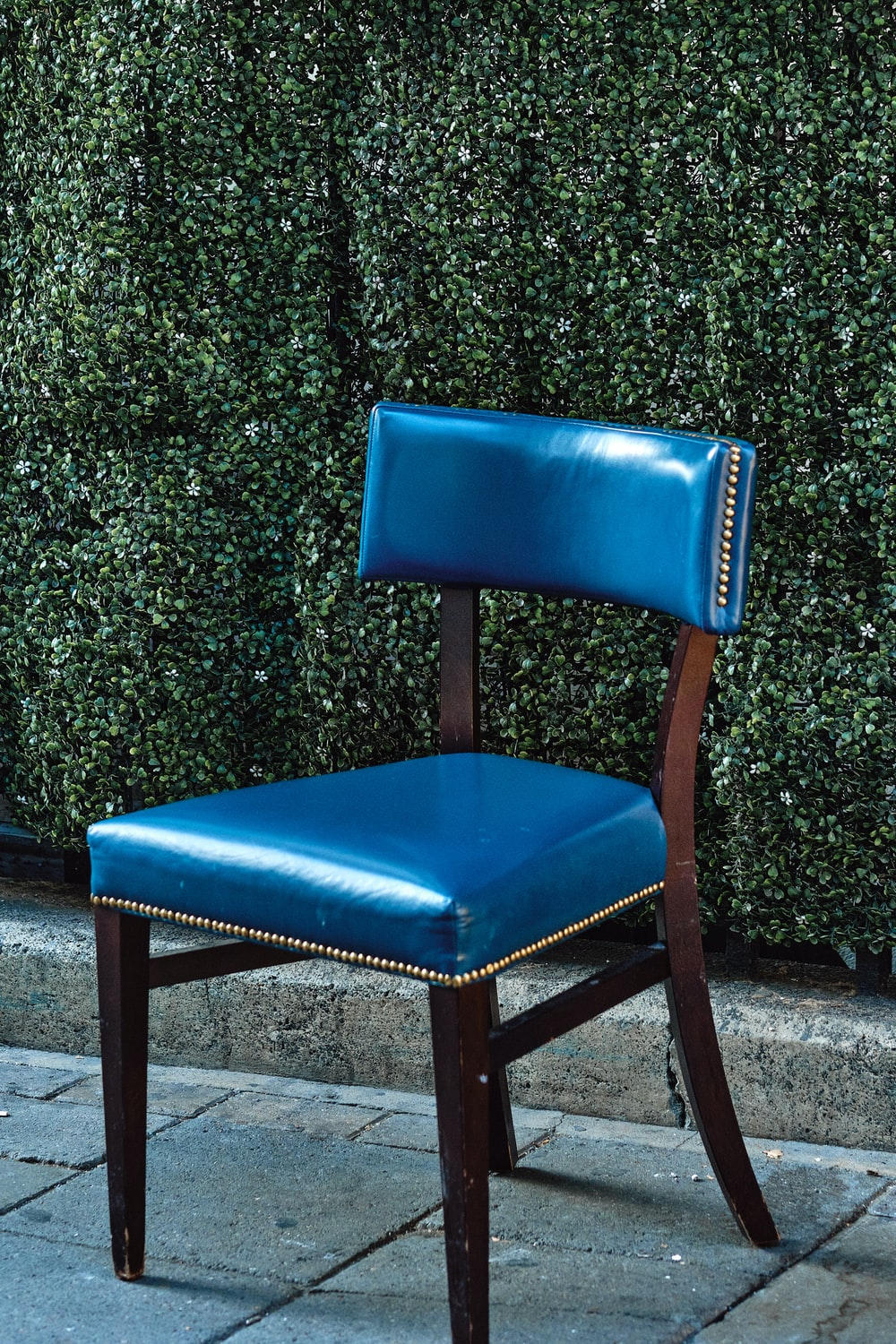 blue leather padded chair beside green plant