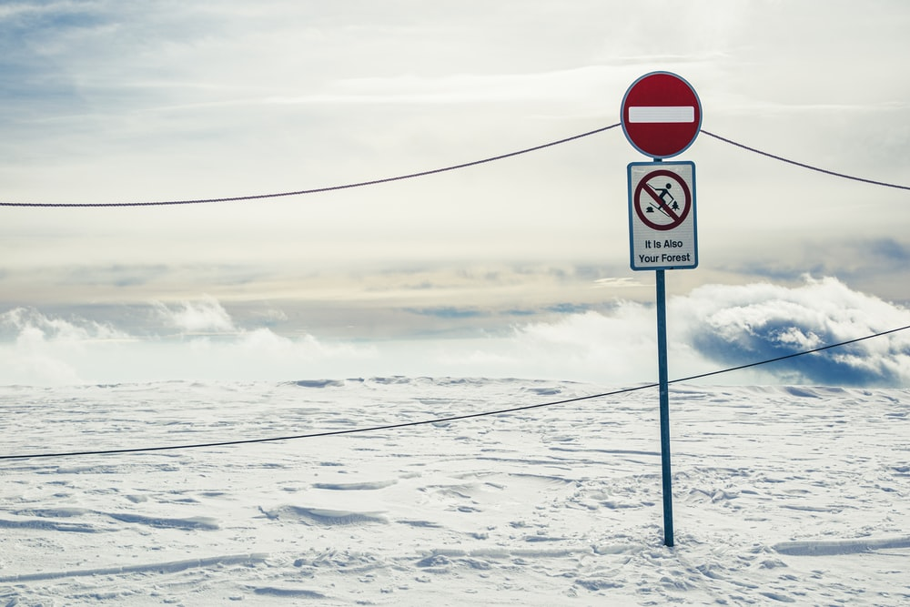 red and white stop sign on snow covered ground under white cloudy sky during daytime