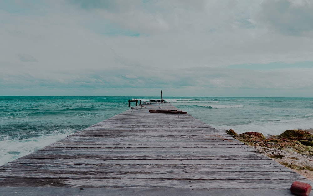 person standing on wooden dock near sea during daytime