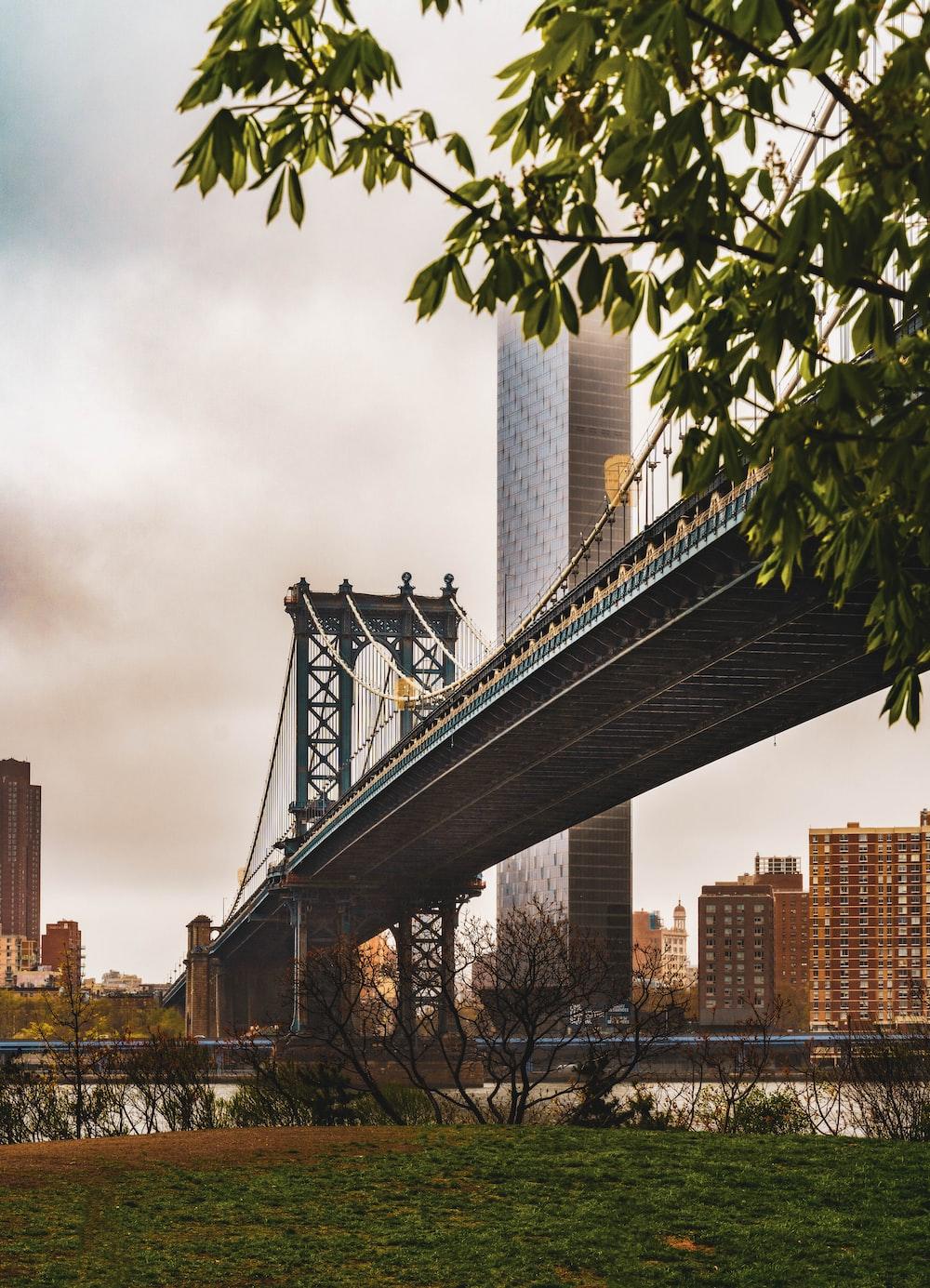gray bridge under gray sky