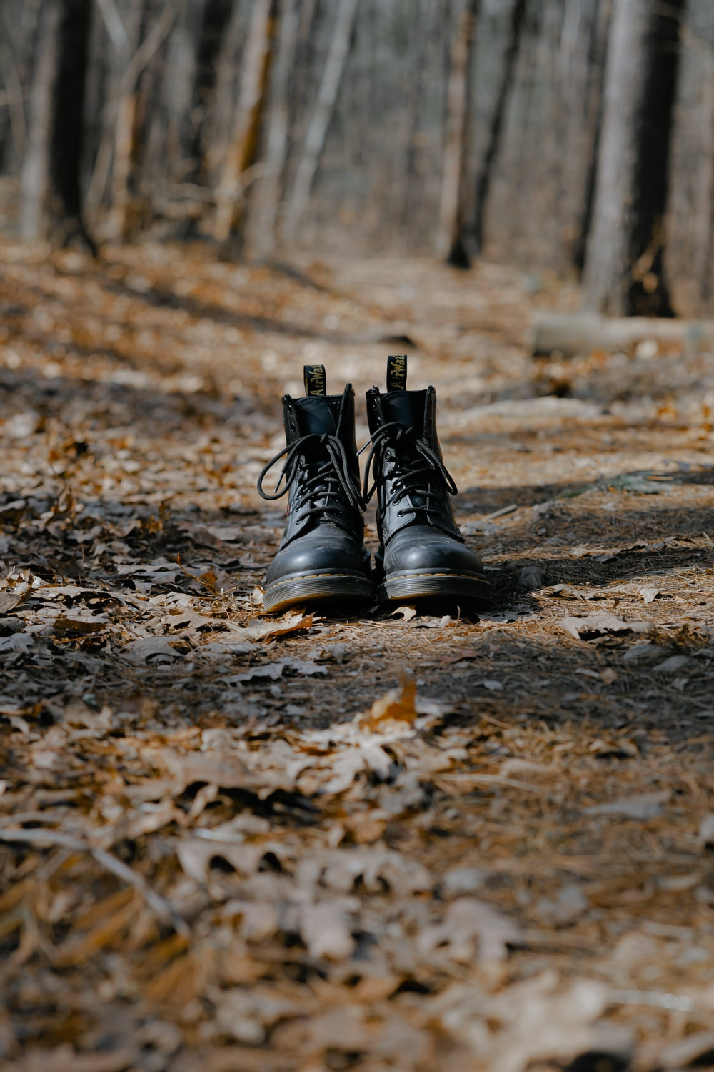 black leather boots on brown dried leaves