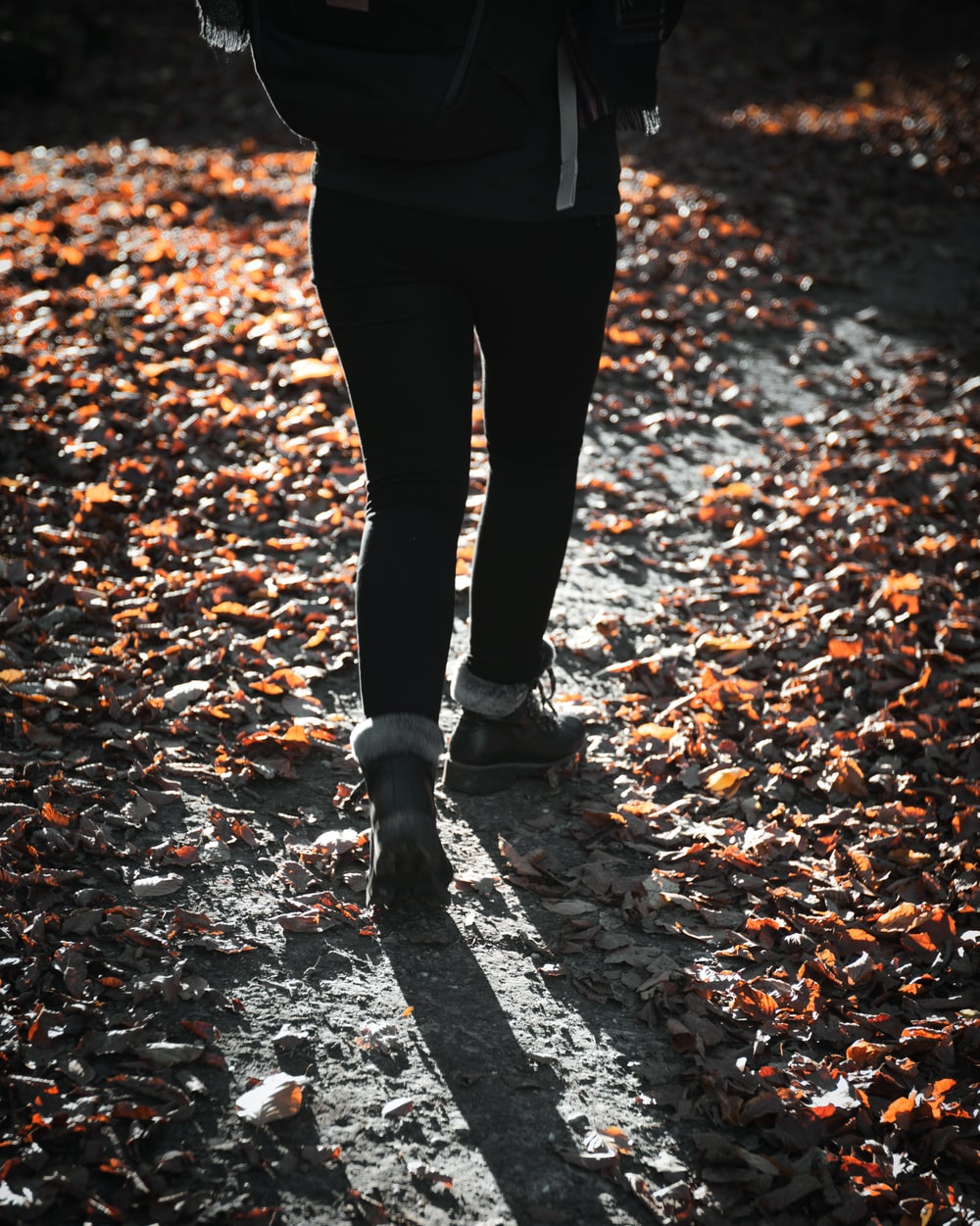 person in black pants and black shoes standing on dried leaves on ground