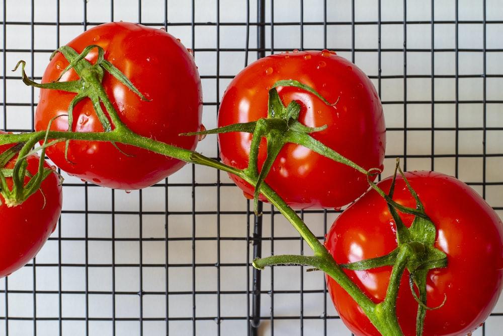 red tomato on white metal frame