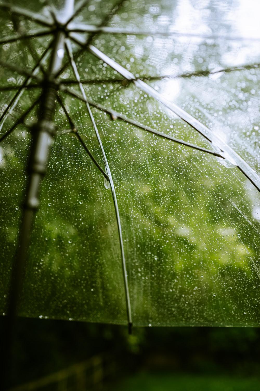 water dew on spider web