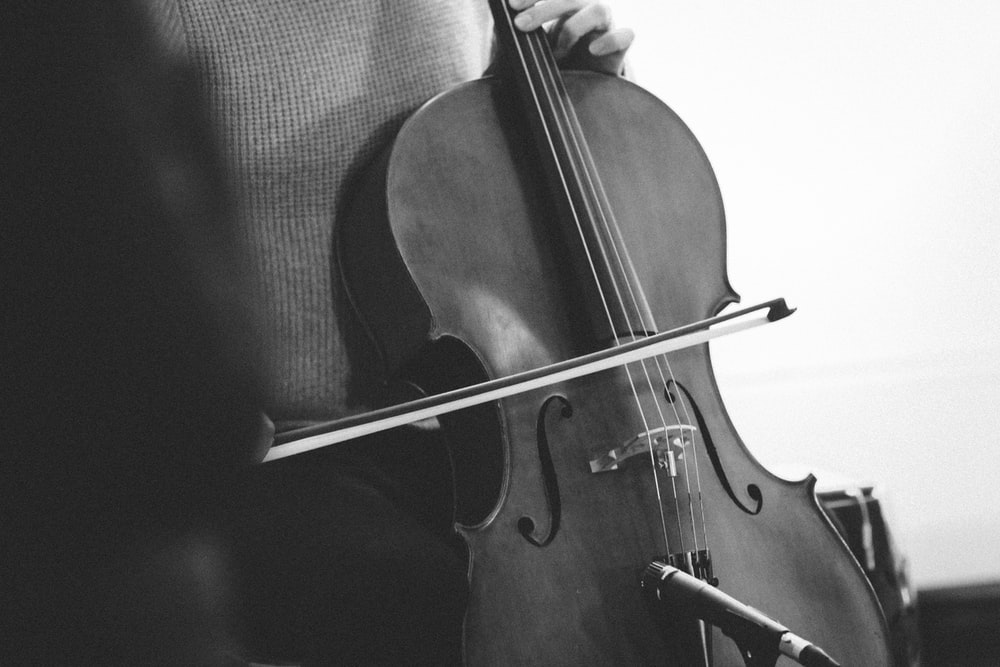 brown violin on black textile