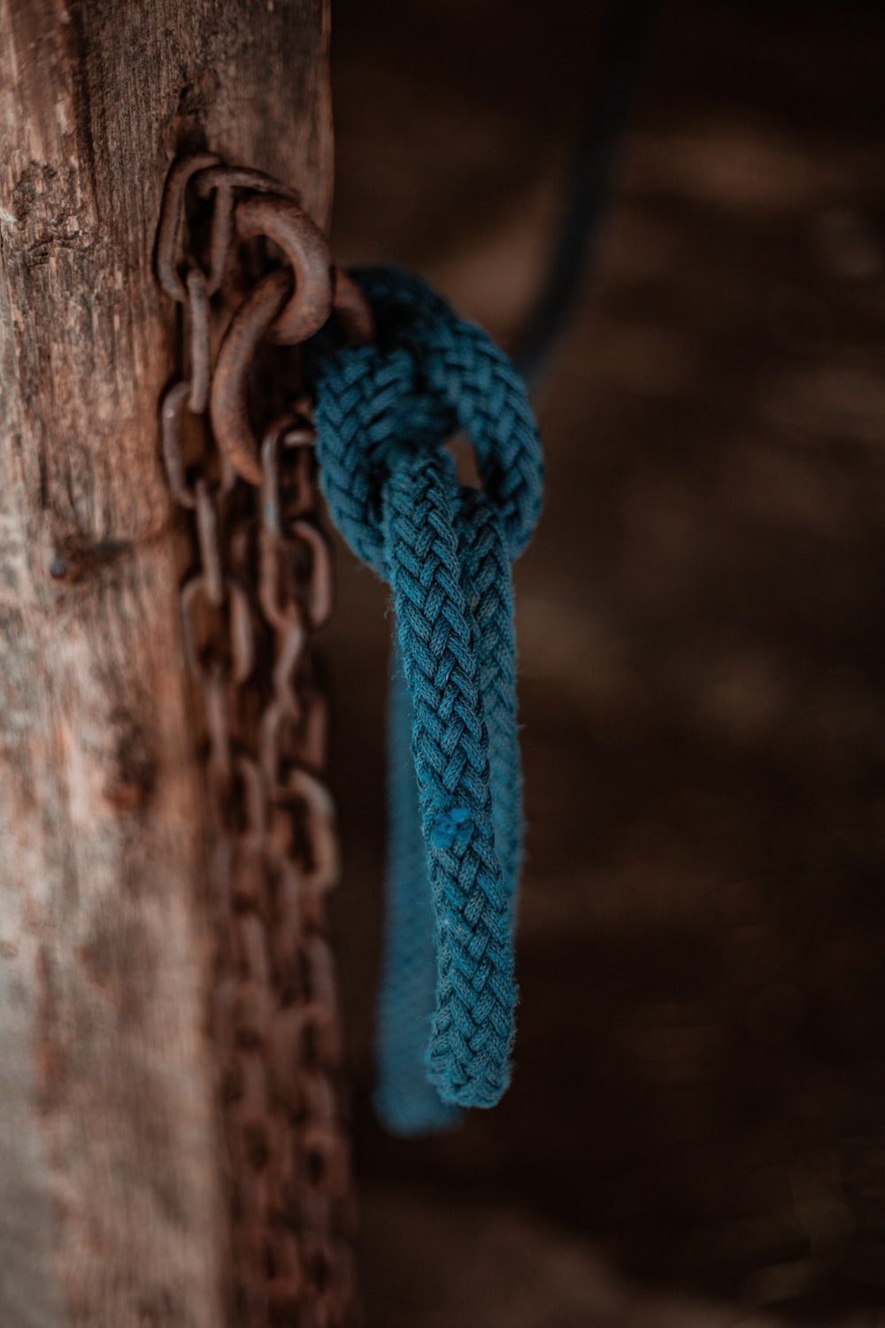 blue rope on brown wooden fence