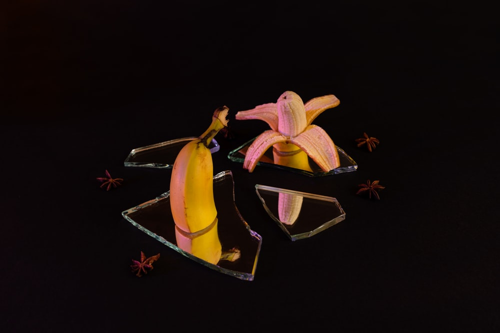 yellow and black butterfly on brown wooden table