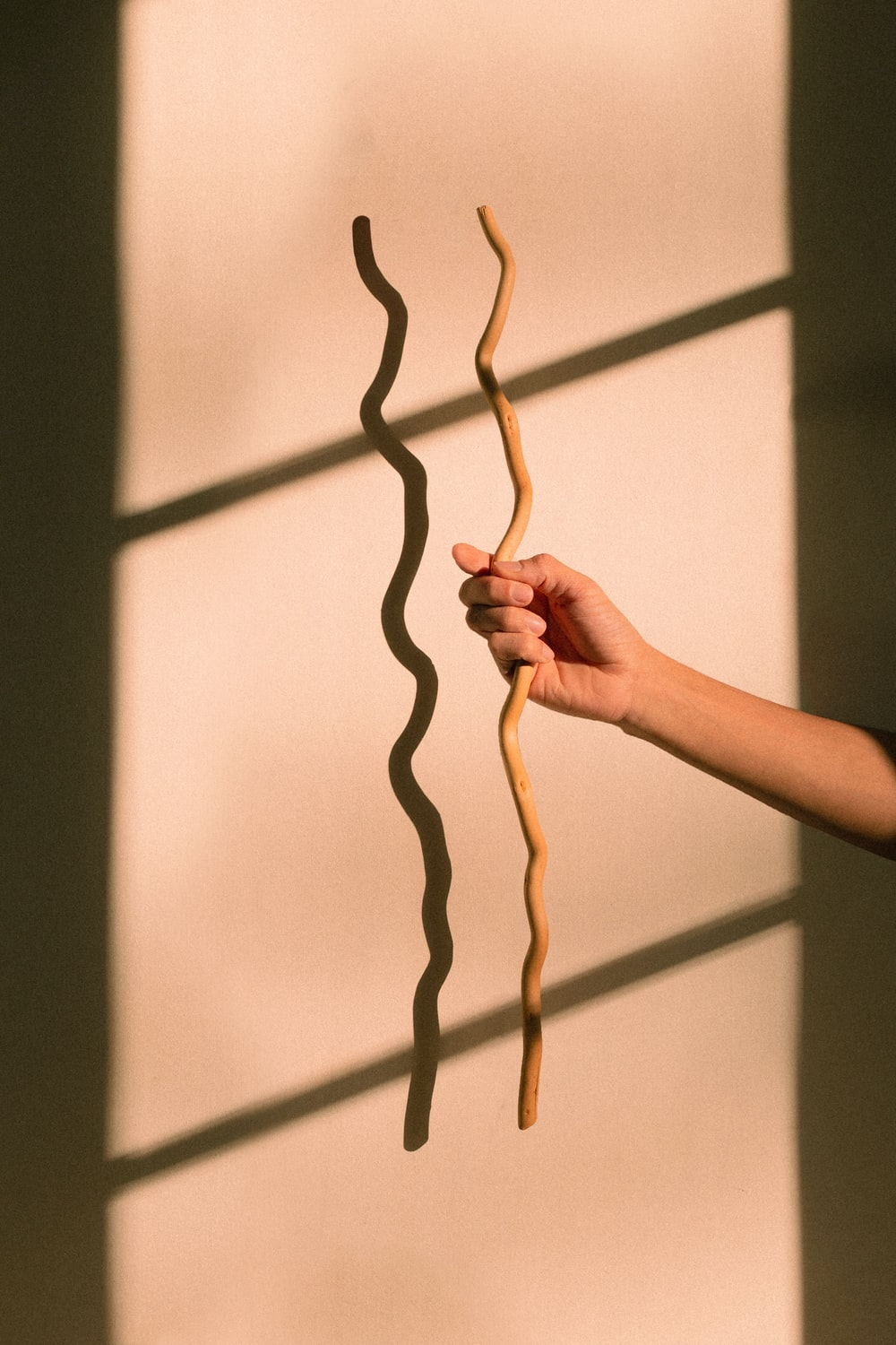 person holding brown rope in front of white wall