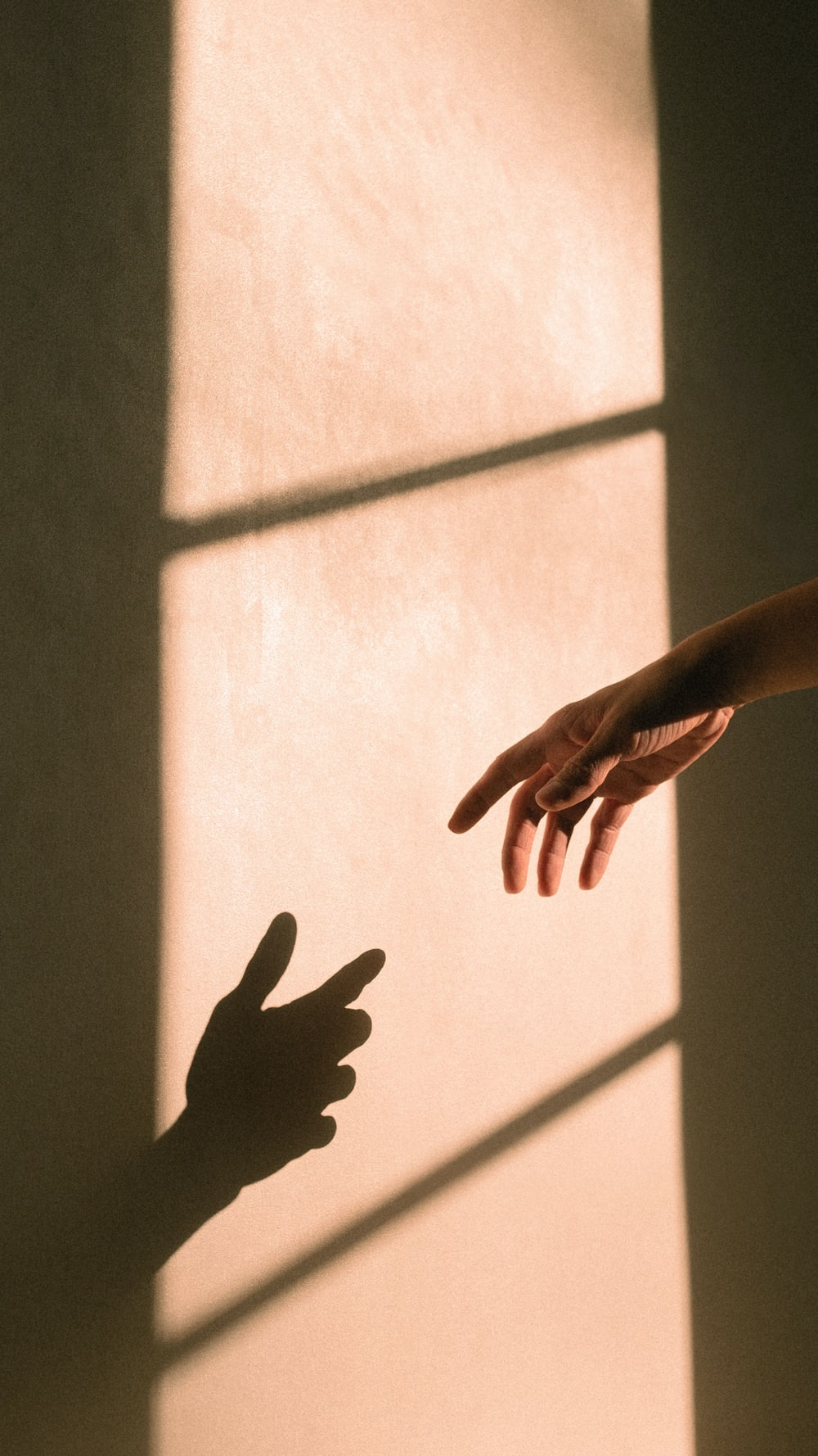 persons hand on white wall