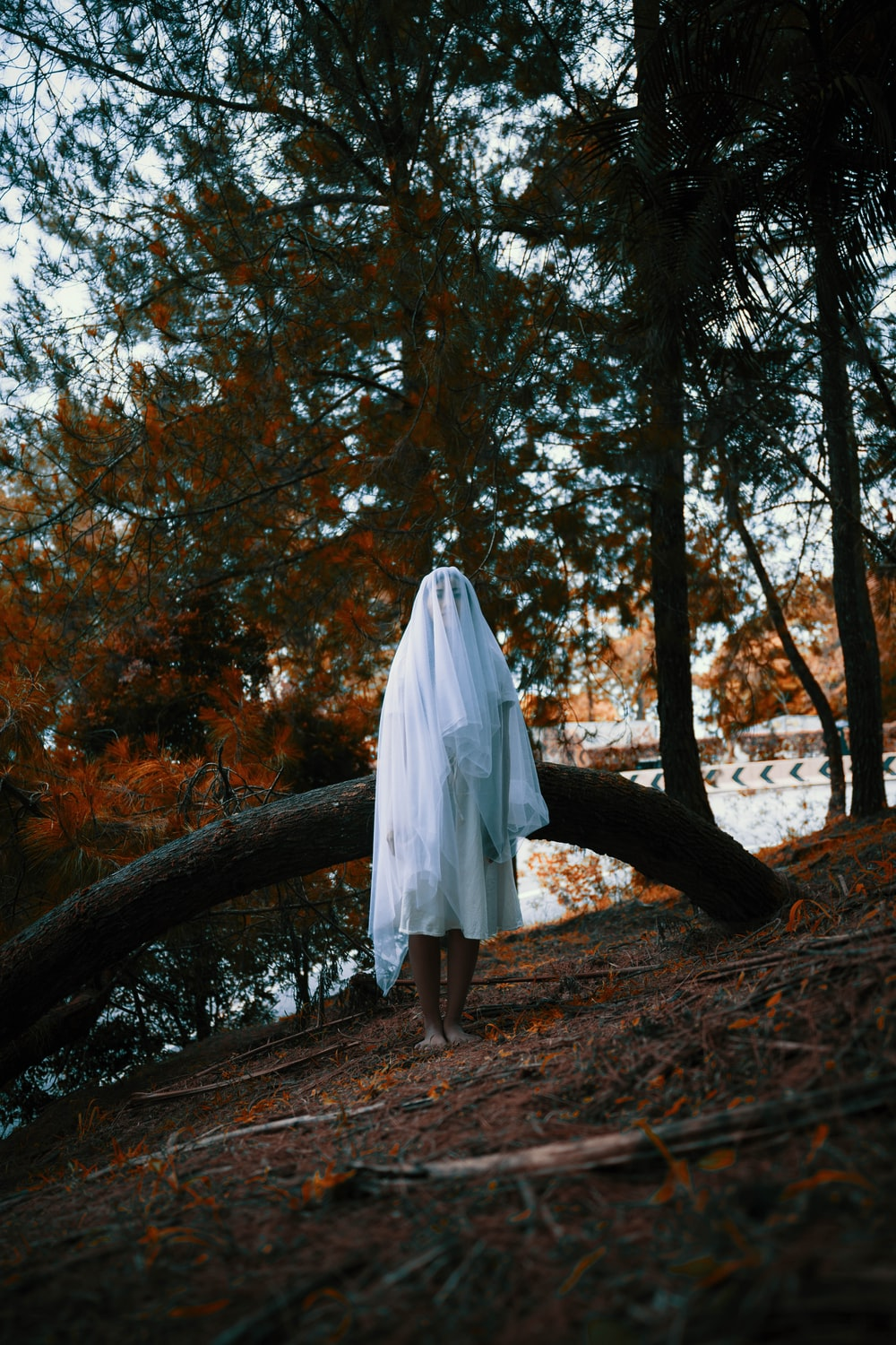 woman in white dress standing on brown tree trunk during daytime