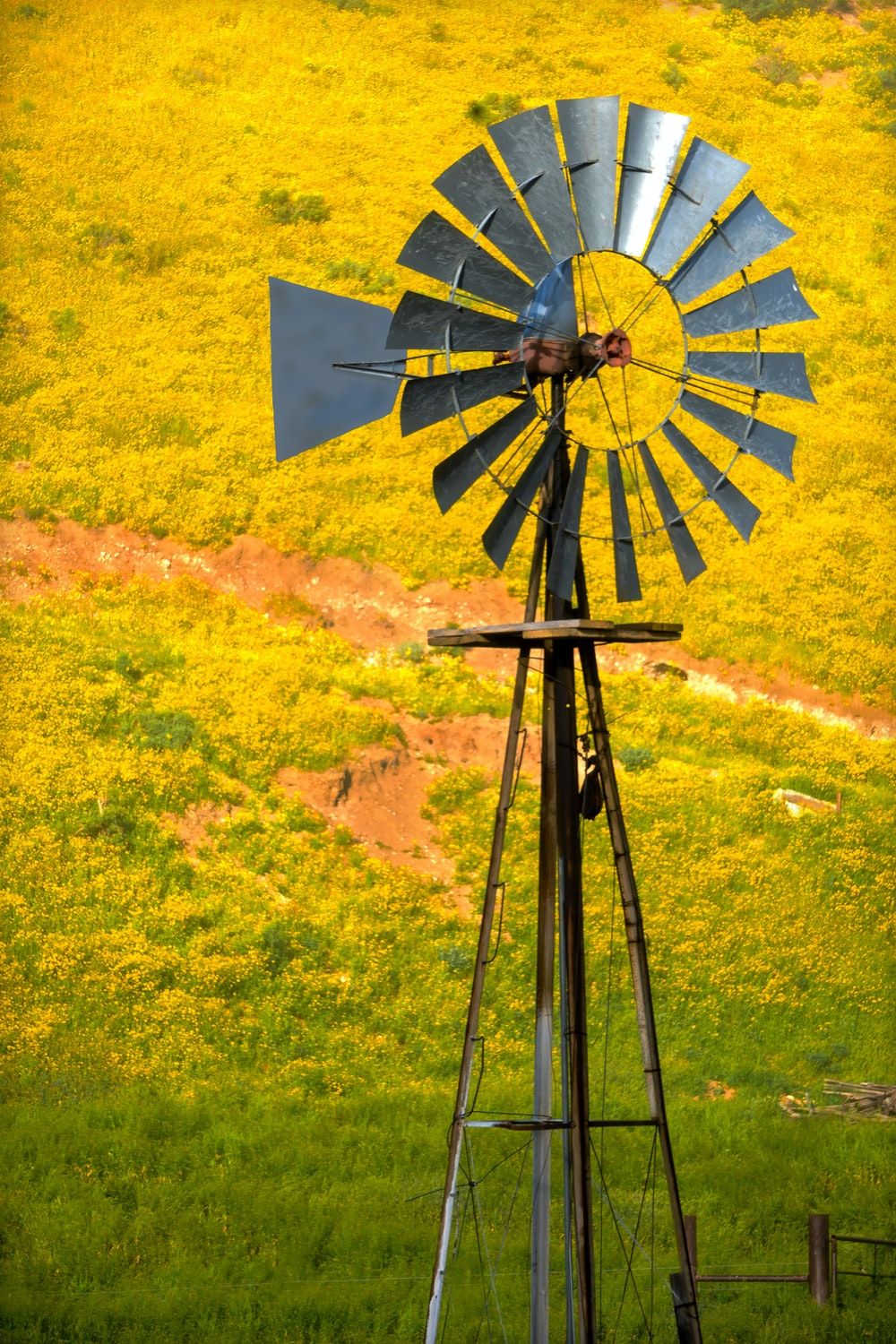 blue and yellow windmill on green grass field during daytime