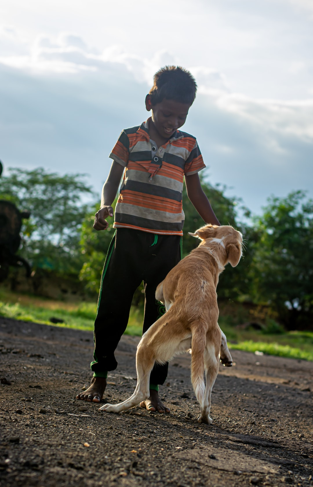 Life Sucks Sometimes | Gratitude, Dog Leashes, but No Dogs