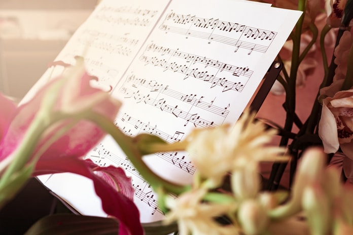 pink rose beside musical notes