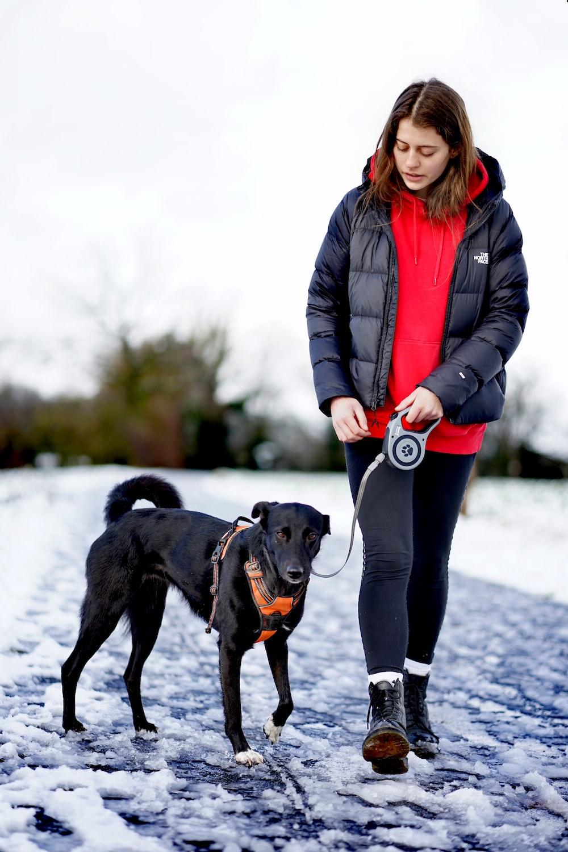 woman in black leather jacket holding black short coat dog during daytime