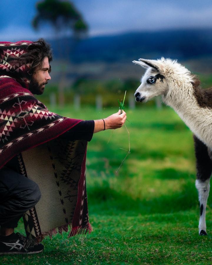 Why move from Philadelphia to Vilcabamba (a tiny village) in Ecuador?