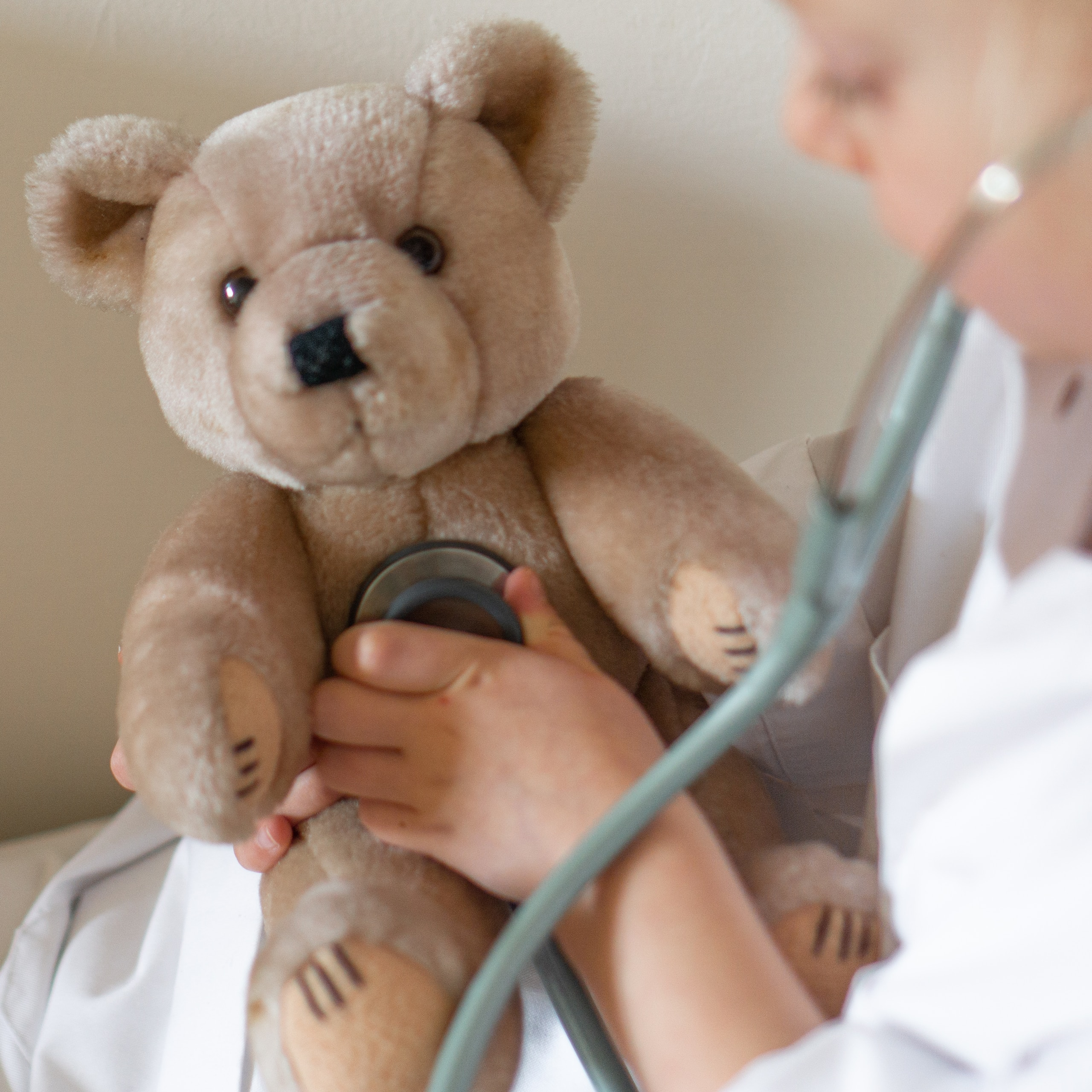 person holding brown bear plush toy