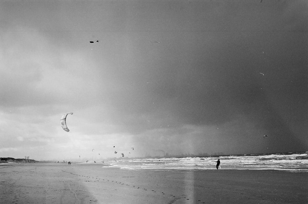 grayscale photo of bird flying over the beach