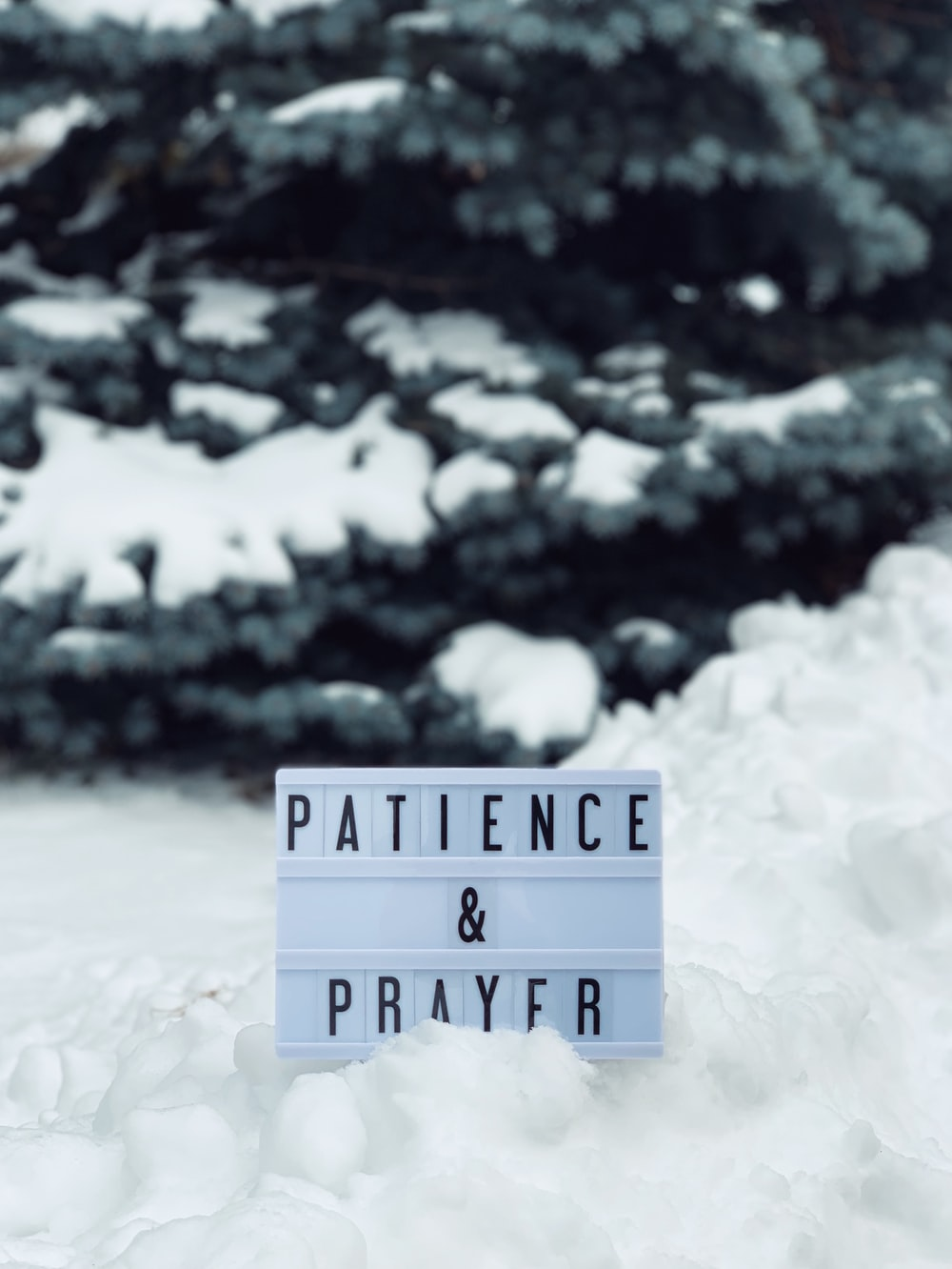 patience & humble
