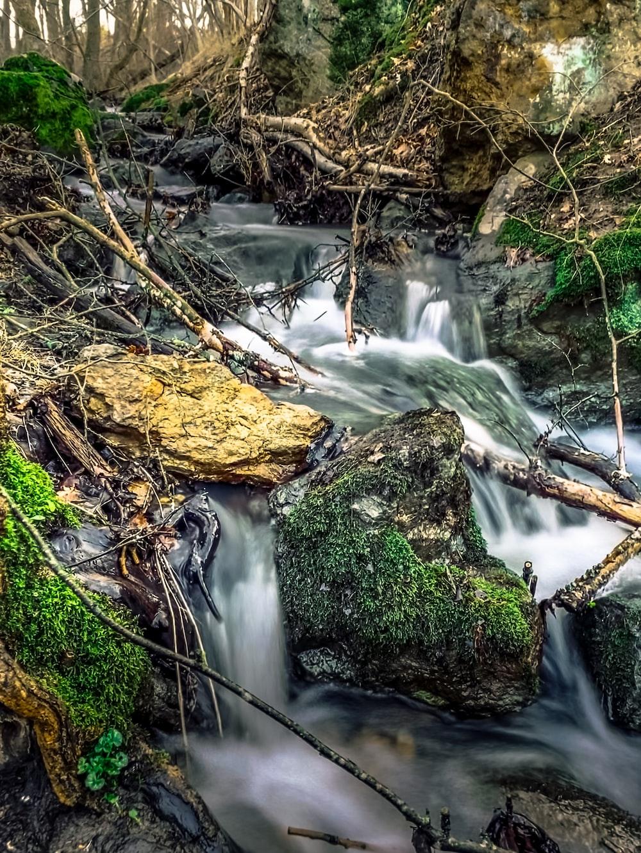 green moss on brown rock near river