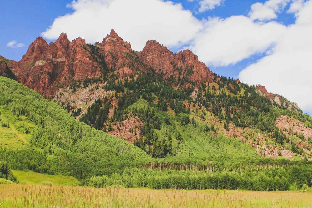 green grass field near brown mountain under blue sky during daytime