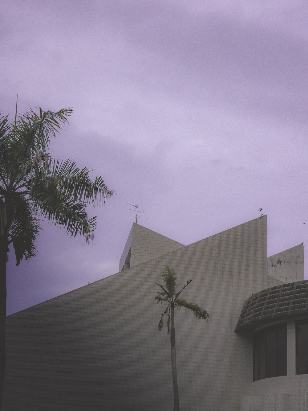gray concrete building near palm tree under white clouds during daytime