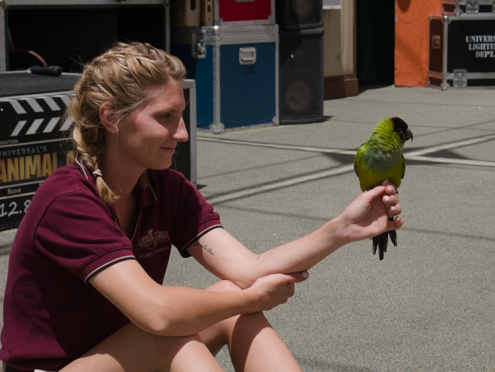 green bird on womans hand