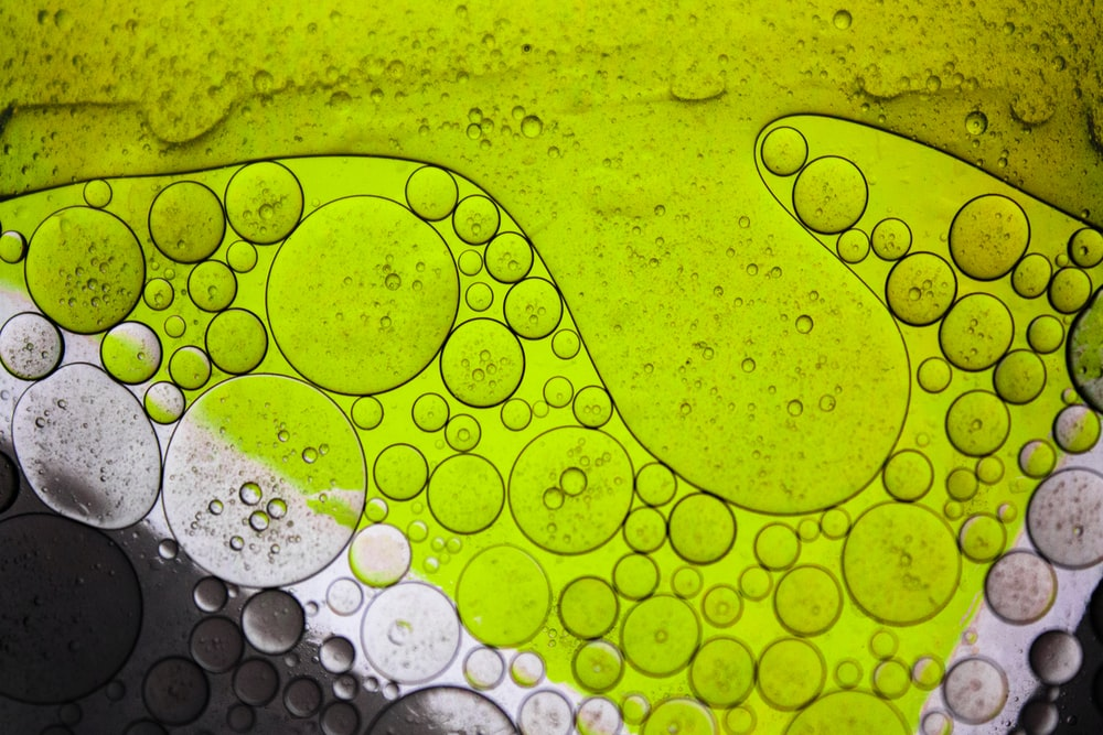 water droplets on green surface