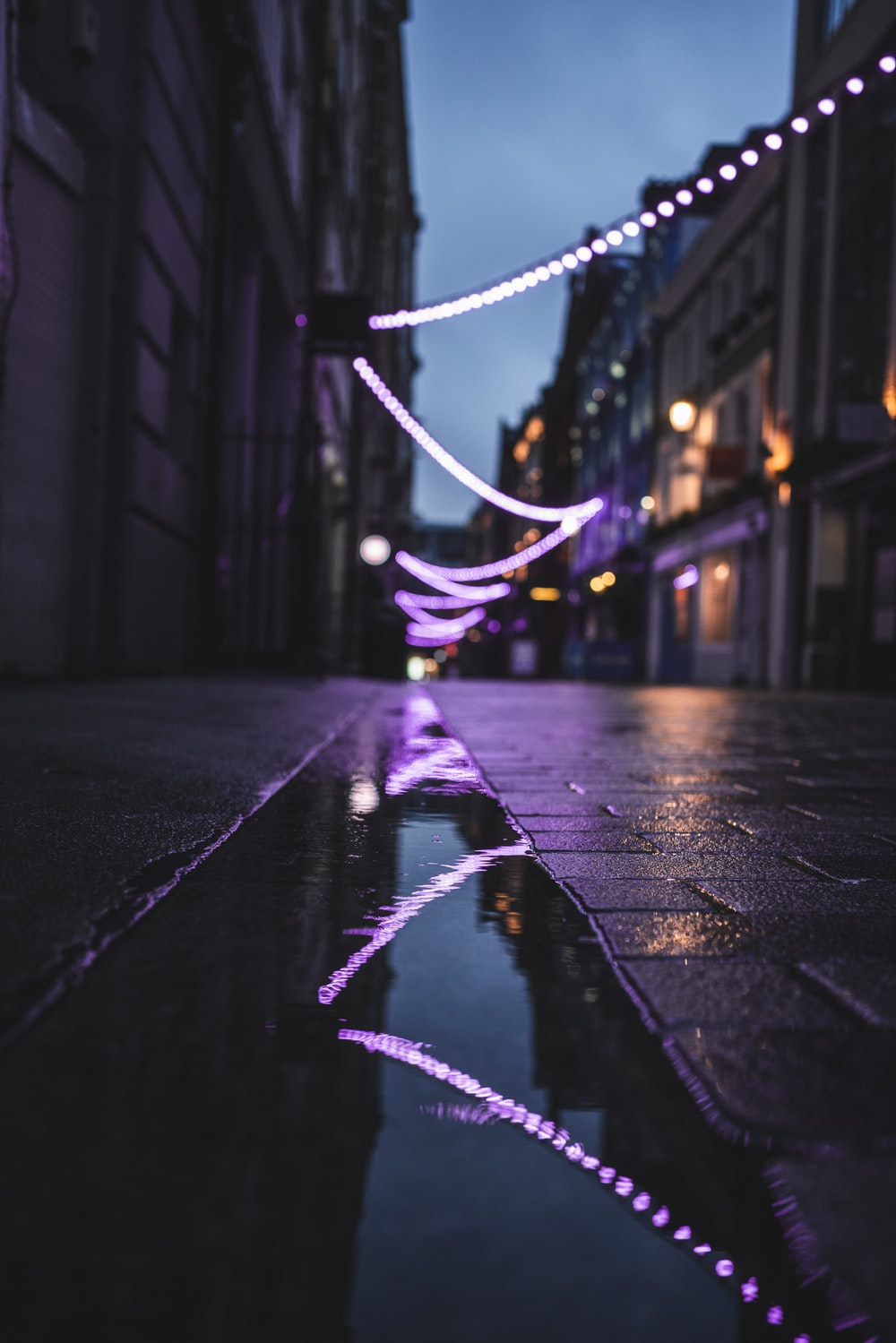 purple and blue string lights on road during night time