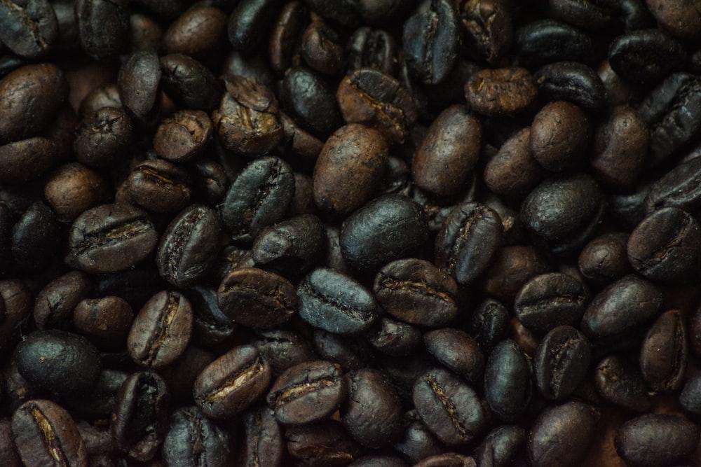 black coffee beans on white ceramic plate