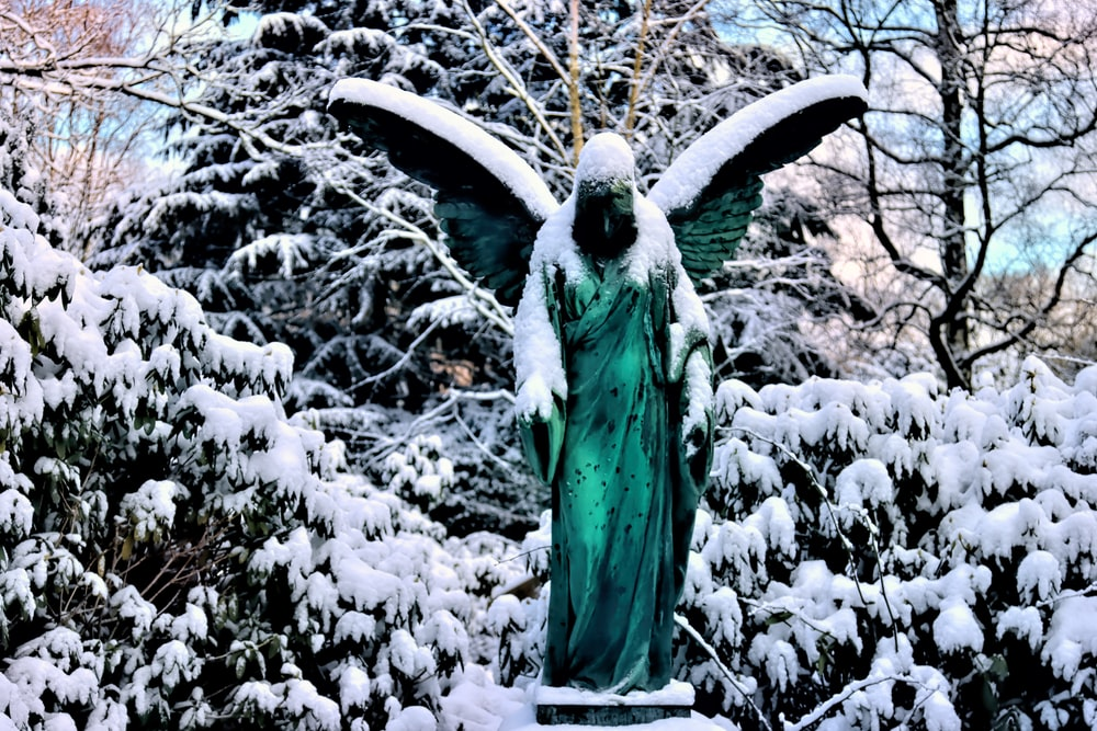 green bird on tree branch covered with snow