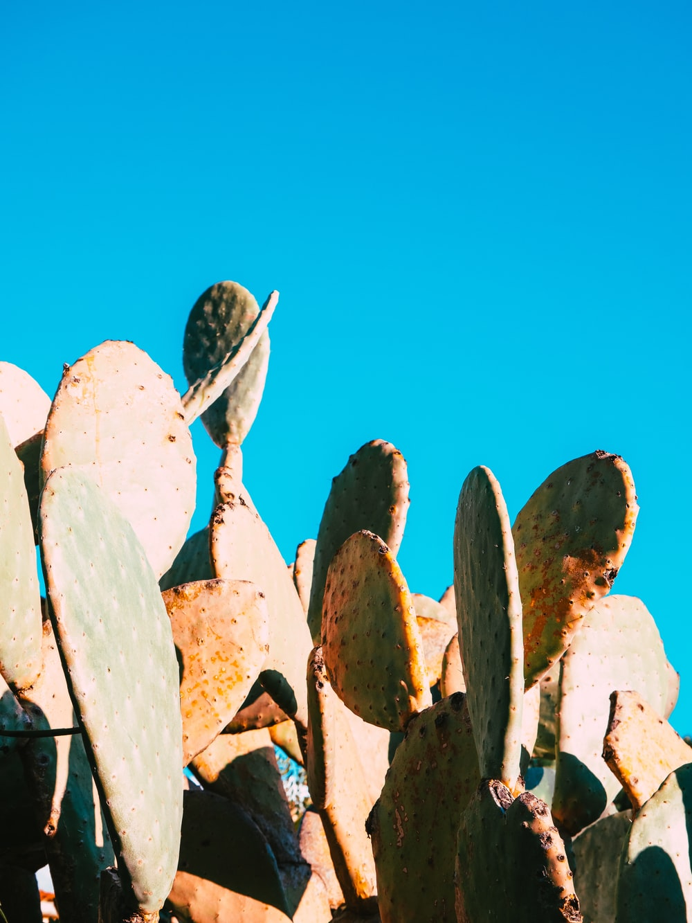 brown and white rocks under blue sky during daytime