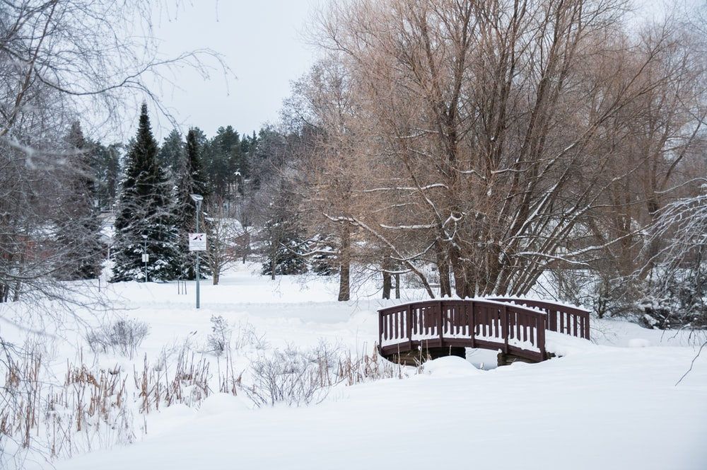brown wooden bridge over snow covered ground